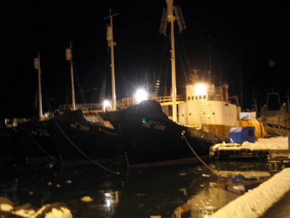 The Whale boats in Reykjavík harbour